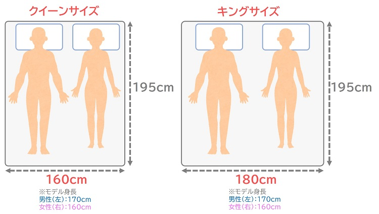 クイーンとキングのサイズ比較