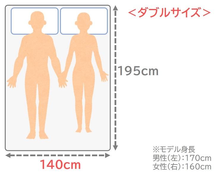 ダブルサイズのサイズ感