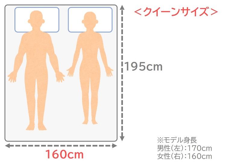 クイーンサイズのサイズ感