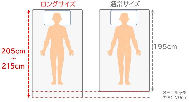 ロングサイズと通常サイズの比較