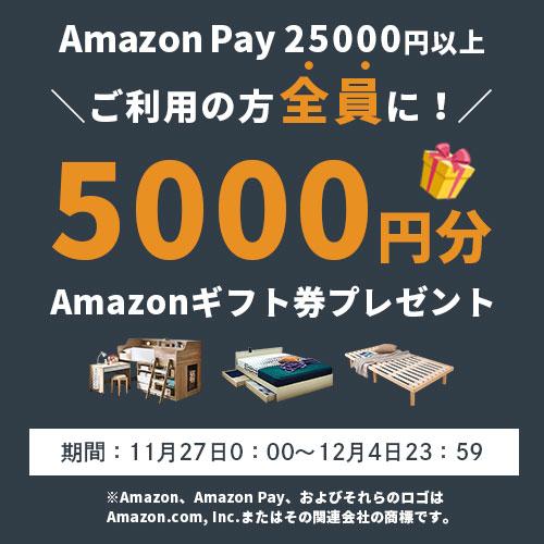 25,000円以上の購入でAmazonギフト券5,000円分プレゼント